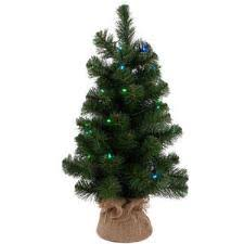 24 Inch Augustine Pine Tree With 35 Color Changing Battery Operated LED Lights