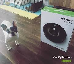 Roomba For Hardwood Floors Pet Hair by Irobot Home Facebook