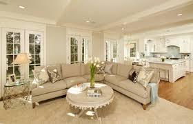 Gray Owl Benjamin Moore Traditional Living Room
