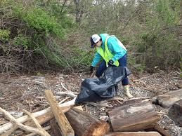 Baltimore County Christmas Tree Pickup 2016 by Volunteers Clean Up Patapsco River Shoreline As Part Of Earth Day