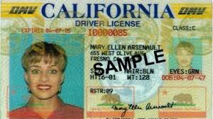 Some Driver's Licenses May Not Get You On Planes Soon Gulf Coast Residents Struggle To Recover After Hurricane Harvey Ptdi Stories Rotary Club Of Homerkachemak Bay City Colleges Has Paid 3 Million For Bus Shuttle With Few Riders Httpswwwkoatcomartbunsimplementnohoodiespolicy Weny News Truck Driver Arrested Violent Erie Kidnapping Rape Olive Driving School Marshta 003 Gezginturknet Town Skowhegan Oakley Transport Route 66 Road Trip Planning Guide Ipdent Travel Cats Professional Institute Home Facebook Checkpoint Nation