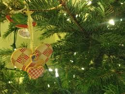 Aspirin For Christmas Tree Life by Nature Nurture Grow December 2013