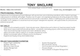 Sample Resume Profile Statements Also Examples Of For Resumes Profiles