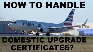 American Airlines Executive Platinum Desk International by American Airlines Refrain From Buying 500 Mile Upgrade