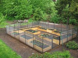 Amazing of Raised Beds In Garden 17 Best About Raised Bed