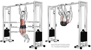 Hanging Leg Raisescaptains Chair Abs by Hanging Straight Leg And Hip Raise Guide And Video Weight