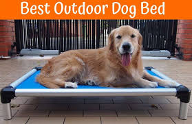 Filson Dog Bed by Review Of The Best Outdoor Dog Bed Us Bones