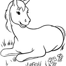 Free Coloring Book Pages Horses Archives