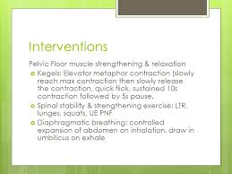 Pelvic Floor Tension Myalgia Exercises by Differential Diagnosis Of Pelvic Floor Pain In Pregnancy Ppt