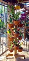 Patio Plant Stands Wheels by 12 Amazing Ideas For Indoor Herb Gardens Pot Hanger Plant