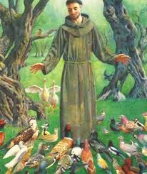 st francis of assisi prayers for the animals and all the