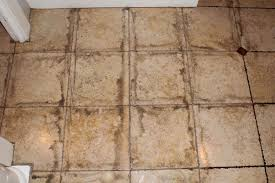 cleaning bathroom tile grout mildew cleaning bathroom