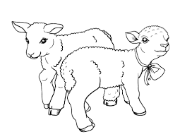 Full Size Of Coloring Pagelamb Pages Sheep For Kids Page Lamb