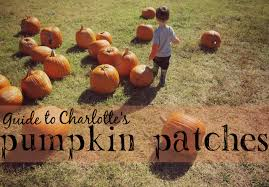 Oklahoma Pumpkin Patches 2015 by Shannon Charlotte Moms Blog