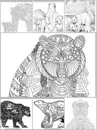 7 Bear Printable Coloring Pages For Adults