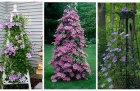 Http Deavita Wp Content Uploads Gartengestaltung Und Pflege Anregungen Und Ideen Deavita