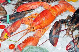 cuisiner homard congelé homard congelé avec de la glace sur la vente banque d images et
