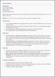 Resume Career Summary Examples Inspirational Objective New For Sales Best