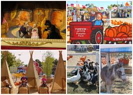Best Pumpkin Patch In San Bernardino County by Plan A Day Out Blog Promoting Family Time In Orange County By