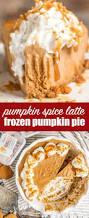Bake Pumpkin For Pies by Frozen Pumpkin Pie No Bake Pumpkin Dessert Recipe With Gelato