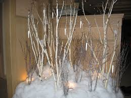 See Birch Trees Under Props