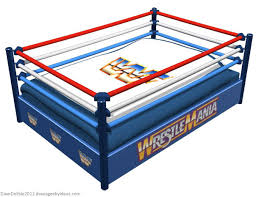 geeky beds part 2 wrestling ring dave s geeky ideas