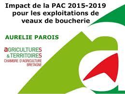 chambre d agriculture bretagne impact de la pac 2015 2019 pour les exploitations de veaux de boucher