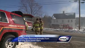Fire Crews Rescue Animals From Burning Boscawen Barn - YouTube Barn Rabbit Rescue Driving The Rusty 200 Abdoned 56 Chevy Cheap Truck Challenge Central Whidbey Island Fire Responds To At The Smith Injured Barn Owl Rescued Wildlife Friends Foundation Thailand Old Barns Long May They Live Shelter And Stand In Green Open Unboxing Paw Patrol Roll Rockys And Play Fun The Rescue Barn Adopted Dogs Rvr Horse Takes Worst Cases To Heal Renew Tbocom Paw Patrol Rocky8217s Track Set Walmartcom European Owl A Bird Rehabilitated Trained For Assortment Of 6 Small Dogs From Rescue Group Sit On Lavendar
