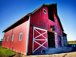 How To Prep Weathered Wood For Painting | DIY Free Picture Paint Nails Old Barn Red Barn Market Antiques Hoopla 140 Best Classic Barns Images On Pinterest Country Barns Architecture Charming Exterior Design For A House Using Gambrel Solid Color 8k Wallpaper Wallpapers 4k 5k Do You Know The Real Reason Are Always I Had No Idea Behr 1 Gal Sc112 And Fence Wood Large Natural Awesome Contemporary With Dark Milk Paint Casein Paints Gal1 Claret Adjective Definition Synonyms Macmillan Dictionary How To Prep Weathered For Pating Diy Swan Pink Grommet Ready Made Curtains
