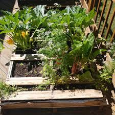 Notes From The Veggie U Pallet Garden
