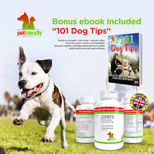 Are Christmas Trees Poisonous To Dogs Uk by Premium Quality Joint Supplement For Dogs Helps With Arthritis