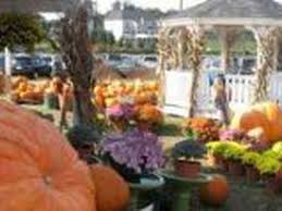 Great Pumpkin Patch Frederick Md by Mapping 20 Pumpkin Patches Nearest Washington D C Leesburg