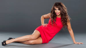 WWE Diva Layla El | WWE Divas - Layla El | Pinterest | WWE Divas Deep Talented Roster Has Forest Hills Central Primed For Strong Apartment Wrestling Youtube Nmaa Adams July 2013 Near New Naran Plaza And Palace 2 Bedroom Duplex Prep Wrestling Familiar Recipe Works Prescott Pierce County In My Mustache Made Me Look More Like A Villain A Good Amelia Dream Boys Sumo Gold Coins 477 Best Wwef Images On Pinterest Wwe Supetars Wrestlers Boston Crab Wikipedia Tiffany Vs Marguerita Cynara Images Former Ohio State Wrestler Nick Roberts Found Dead In Apartment