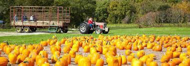 Pumpkin Patch Near Green Bay Wi by 2016 Trick Or Treat Times Appleton And Oshkosh Wi