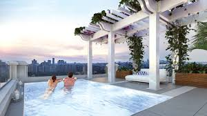 100 Penthouses For Sale New York Penthouse For Sale 29500000 In 1110 Park Ave