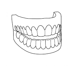 Tooth Coloring Pages Printable Teeth Clean Page Educations
