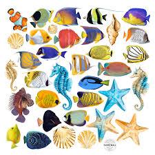 fliesentattoo see welt sea fische seestern seepferd wandtattoo aufkleber 36 teile