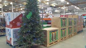 Ge Pre Lit Christmas Trees 9ft by Costco Led 9 Ft And 7 5 Ft Christmas Trees Youtube
