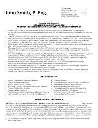 Healthcare It Resume Sample Marketing A Template For Strategic Market Manager You