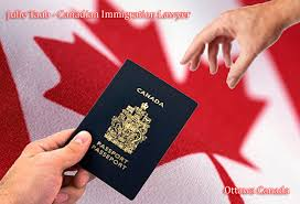 canada immigration lawyer julie taub