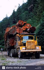 A Loaded Logging Truck In Northern British Columbia Canada Stock ... Northern Alberta Tow Truck Equipment Sales Opening Hours 15236 Competitors Revenue And Employees Owler Leb Truck Ropes Straps Chains Tool Chest Beds For Sale Halsey Oregon Diamond K Amazoncom 41911 Box Automotive Alinum Crossover Singlelid Whats In A Food Washington Post Used Trucks Natts Heavyduty Boxes