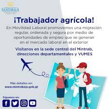 Media Tweets By MINTRAB MINTRABAJOGuate Twitter
