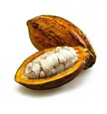 beurre de cacao cuisine beurre de cacao naturel en pastille