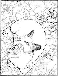 Prissy Inspiration Cat Coloring Book Pages 209 Best Art Images On Pinterest