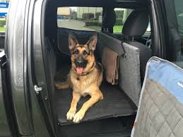 Made A Dog Platform For The Truck... - German Shepherd Dog Forums Hot Dog Of A Food Truck Pays Off For Monroe Fatherson Duo Driver In Arizona Forgets Leashed To Famous Dog Ramp For Truck Ideas Bravasdogs Home Blog The Best Is It Legal Put The Back Pickup Treat East Greenbush Albany Ny Mugzys Barkery Traveling With Your Pet This Holiday Part 4 Mckinney Animal Driving Lorry Stock Photos Images Alamy Crate Pickup N Treats Free Window Cute Canine Transportation Waiting Love Like A Truckin Farmer And Near Photo Getty Why You Shouldnt Let Your Ride Back One