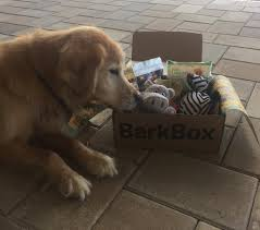 Updated Bark Box Review — Candidly Keri Free Extra Toy In Every Barkbox Offer The Subscription Newly Leaked Secrets To Barkbox Coupon Uncovered Double Your First Box For Free With Ruckus The Eskie Barkbox Promo Venarianformulated Dog Fish Oil Skin Coat Review Giveaway September 2013 Month Of Use Exclusive Code Santa Hat Get Grinch Just 15 14 Off Hello Lazy Cookies Lazydogcookies Twitter Orthopedic Ultra Plush Pssurerelief Memory Foam That Touch Pit