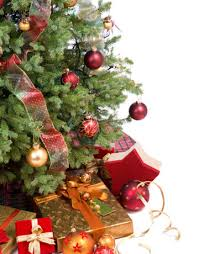 Plantable Christmas Trees Nj by How To Pick The Greenest Christmas Trees Green Holidays