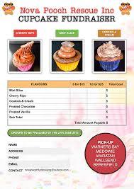 Nova Pooch Fundraising Cupcakes