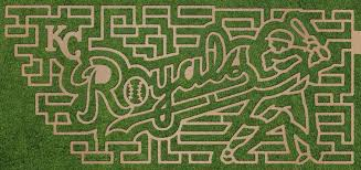 Faulkner Pumpkin Patch by Corn Maze Kansas City Children U0027s Activities Kc Kids Fun