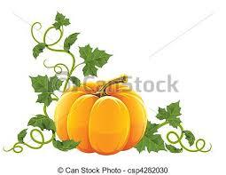 Ripe Orange Pumpkin Ve able With Vector